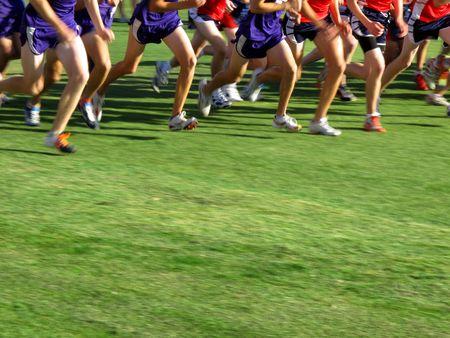 quickness: Runner running a race cross couintry on green grass field