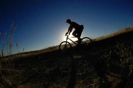 Mountain biking up a trail in the mountains Stock Photo - 7572720