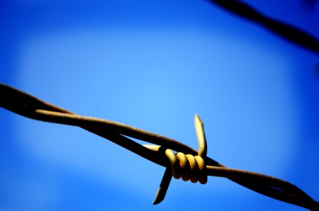 fencing wire: Barbed wire fence with blue sky in background
