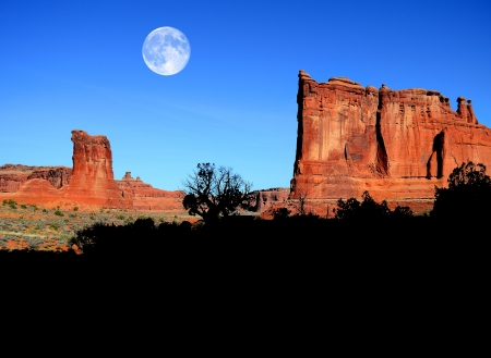 rock arch: Silhouette of bush and hill in Arches National Park with full moon