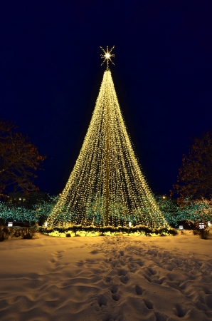 Christmas tree made up of glowing warm lights with snow photo
