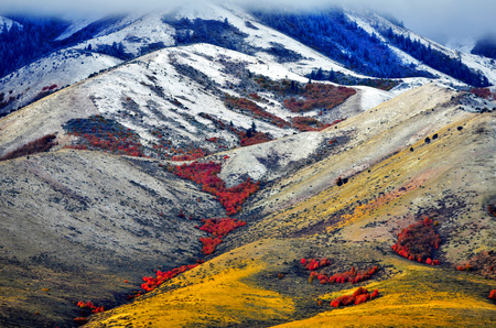 Autumn fall colors in the mountains with first blanket of snow at the top photo