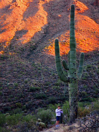 Saguaro cactus on mountainside in desert southwest with girl