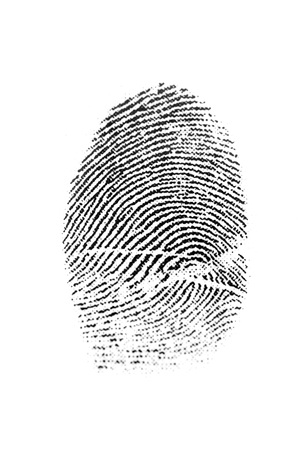 fingermark: Closeup detail of a fingerprint for solving crime or symbolizing science and identity