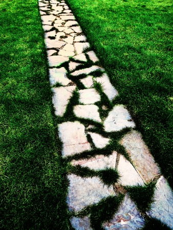 stone steps: Detail of cobblestone walking foot path with lush green grass garden
