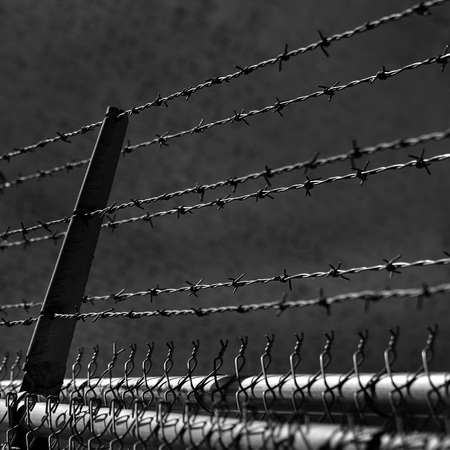 Barbed wire fence for security and safety photo