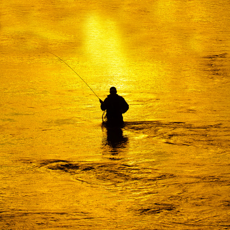 waders: Man fishing in river with fly rod and waders