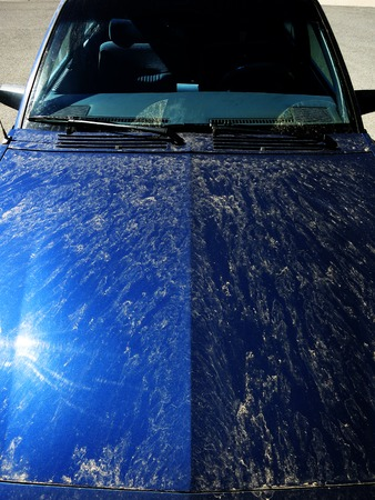 splotchy: Detail of dirty car with dirt needing to be cleaned