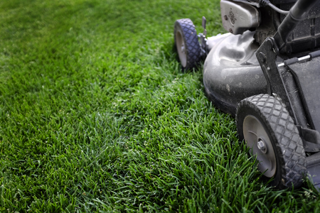 lawn grass: Lawn mower on long green grass preparing to mow or trim Stock Photo