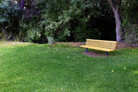 timber bench seat: Wooden park bench to rest relax in grass and trees