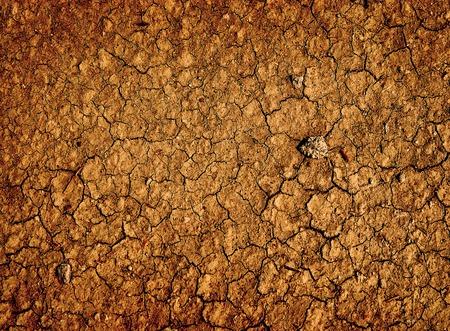parched: Parched dry earth ground Stock Photo