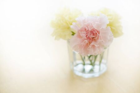 Closeup of fresh spring flowers carnations in cup on old wooden table top decoration Zdjęcie Seryjne