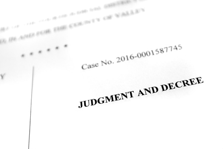 dissolution: Detail of legal papers Judgment and Decree pleadings lawyer