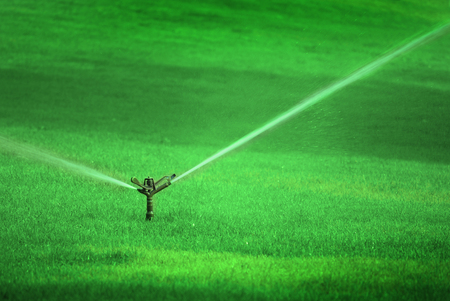 saturate: Sprinker spraying water on lush green grass in park