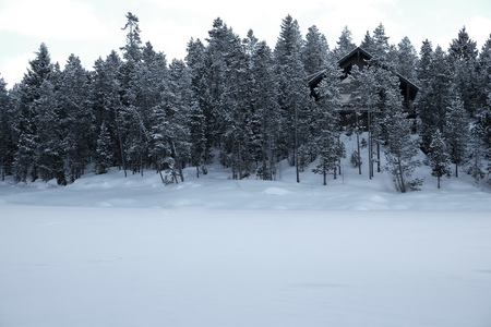 hobby hut: Cabin in the forest woods pine trees winter time covered in snow