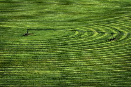 Farmfield with circle pivot irrigation sprinkler