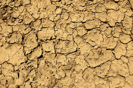 parched: Dried mud dirt drought parched ground Stock Photo