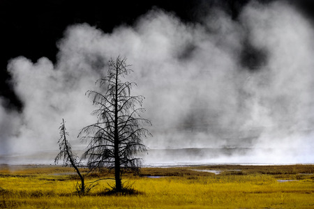 Geysers and steam from hot springs rising in Yellowstone National Park Banco de Imagens