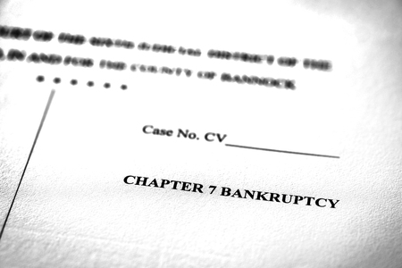 Legal Pleadings Court Papers Law Chapter 7 Bankruptcy