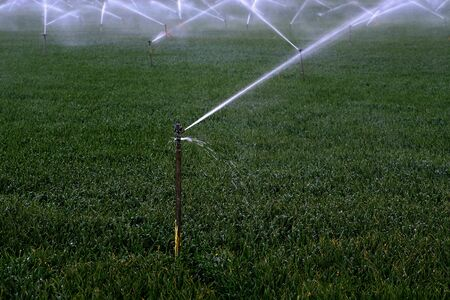 Sprinker irrigation system spraying water on field agricultural Stockfoto