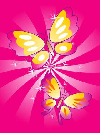 Butterfly Vector Illustration