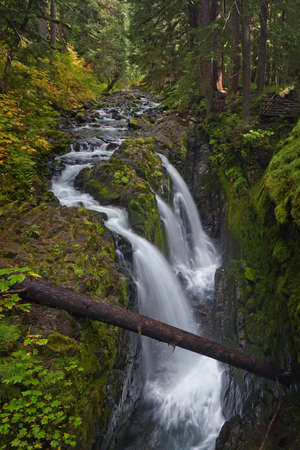 Sol Duc Falls in Olympic National Park, Washington USA. photo