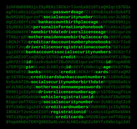emphasized: Screen of alphanumeric cyphertext with emphasized plaintext personal identifying information arranged in the shape of a hacker
