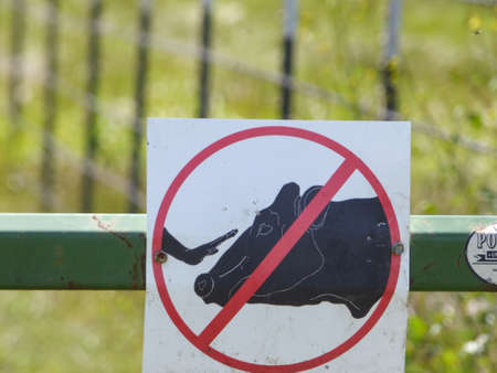Do not touch cows