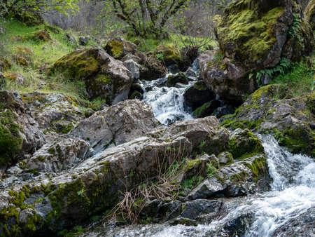 Stream cascading down rocks sierra foothills california Imagens