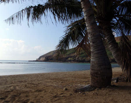 Hanama Bay Beach In The Early Morning on the southeast shore of Honolulu Hawaii.  Taken from the beach.