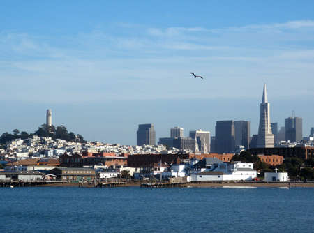 union beach: San Francisco looking out from Aquatic Park.  Featuring the Cities Pyramid, and Cott Tower with a bird flying by.