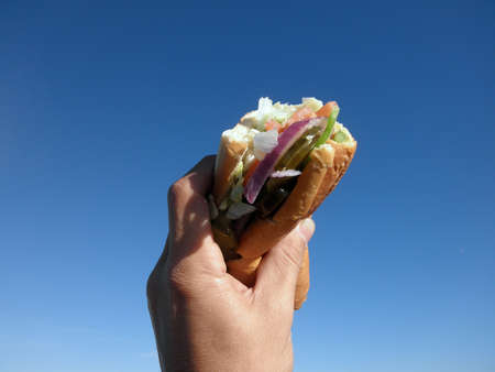 wholemeal: Fresh sub sandwich held up to the sky