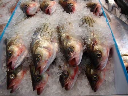 Clese up of frozen fish on display at a Supermarket