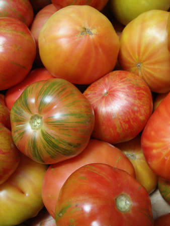 pile of ripe patterned heirloom tomatoes                              photo