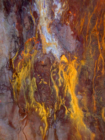 Rusted Metal cracks and bleeds colors from exposure to salt air.  Great for backgrounds. Stock Photo - 7709885