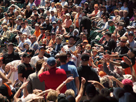 baseball crowd: Giants Vs. Cubs: Giants fans reach out for an incoming foul fly ball in the stands.  August 12  2010 Att Park San Francisco California