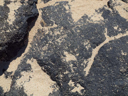 Lava rock with lots of sand on top on Oahu's Makapuu beach Stock Photo - 7946412