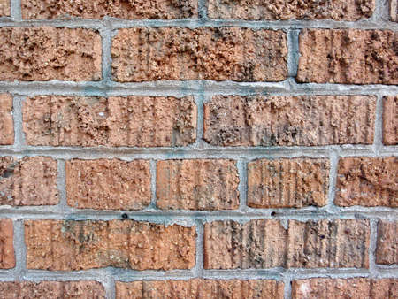Yellow-orange Brick wall cemented together thats has had spray paint removed from it. Stock Photo - 8987561