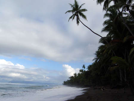 waves lap on remote dark sand beach in Punta Banco, Costa Rica photo
