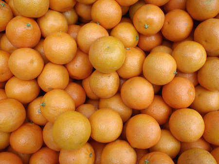 Kumquats for sale at a Farmers Market photo