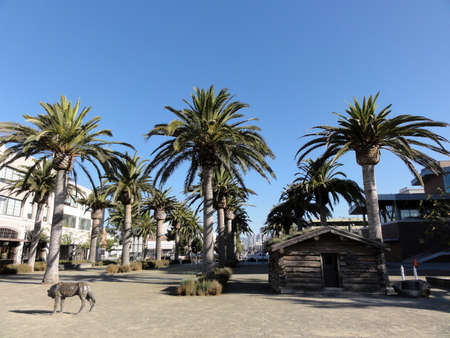 Jack London Log Cabin and Wolf at Jack London Square in Oakland. 新闻类图片
