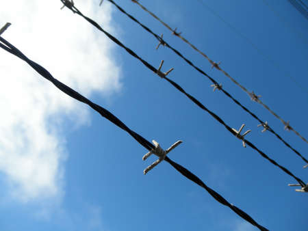 Rows of Barb Wire going upwards and blue sky with a cloud Stock Photo - 12731529