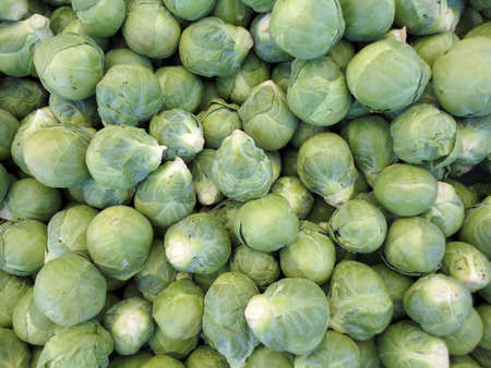 contiguous: Pile of Brussel Sprouts on display at farmers market