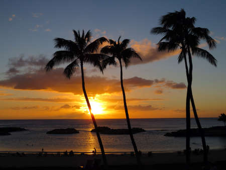 Sunsets on Ko Olina lagoon between coconut trees over the pacific ocean on the island of Oahu, Hawaii  Stock Photo