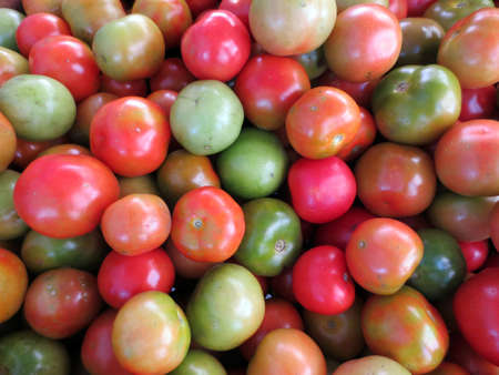 Tomatoes of Red, orange, and green color for sale at farmers market                                 Stock Photo - 18153580