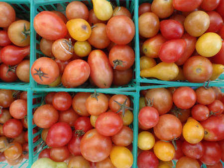 Tomatoes in Square Plastic blue baskets on display at Farmers market in San Francisco, California. photo