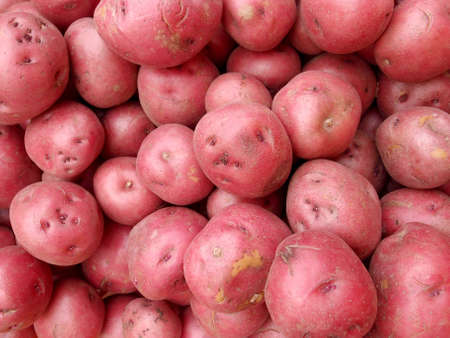 russet: Pile of Red Potatoes for sale at farmers market in Honolulu, Hawaii.