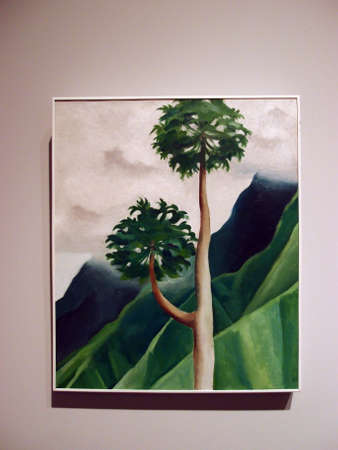 HONOLULU, HI - FEBUARY 5: World Famous artist, Georgia Okeeffe, Papaw Tree, Iao Valley, Maui, 1939 on display at at the Honolulu Musuem of Art taken Febuary 5, 2013 Honolulu, Hawaii.