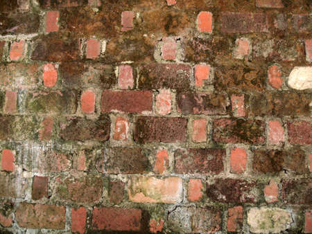 Old worn red brick wall with green moss beginning to grow. photo