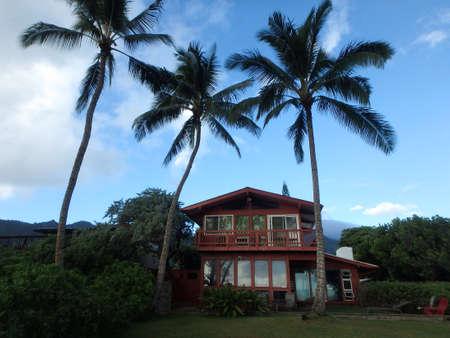 赤背の高いヤシの木と美しい日に、ハワイ ・ オアフ島の背景の山 2 話のビーチの家。 2014 年 9 月。 報道画像